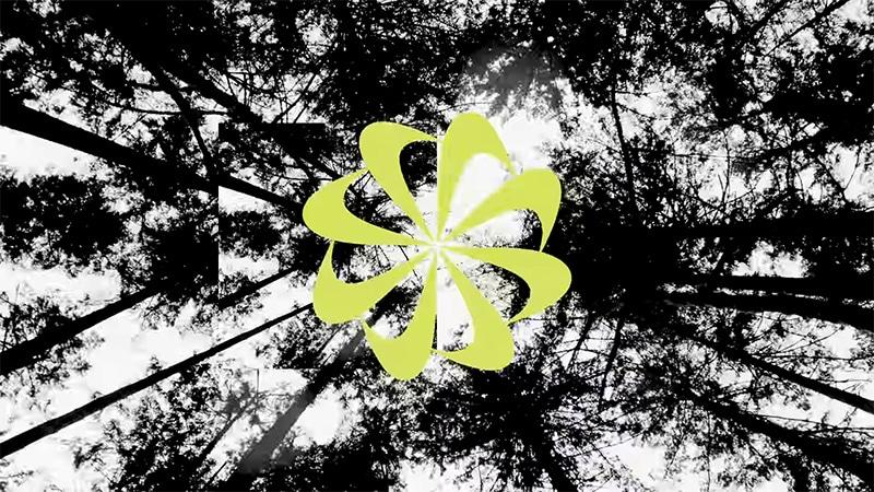 Принципы экологичного дизайна